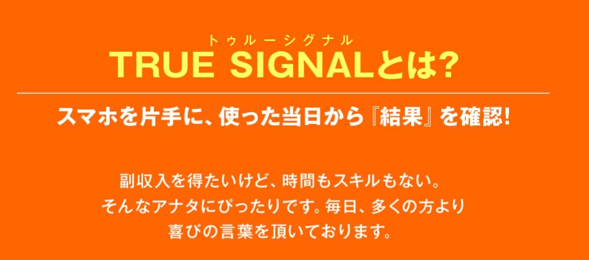 "TRUE SIGNAL概要画像"""""